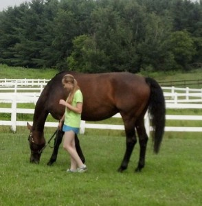 Help Your Teens EquineTherapy-294x300 Summer Schools for Troubled Teens in Venice Florida