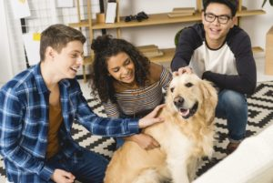 Help Your Teens BigDogTherapy-300x201 Alternative Boarding Schools for Troubled Teens in Missouri